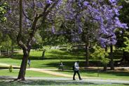 Uci Academic Calendar 2020-21 UCI University Registrar   Quarterly Academic Calendar 2019 20
